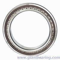 Full complement cylindrical roller bearing|Full complement cylindrical roller bearingManufacturer